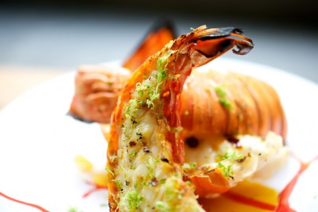how to cook lobster at home video