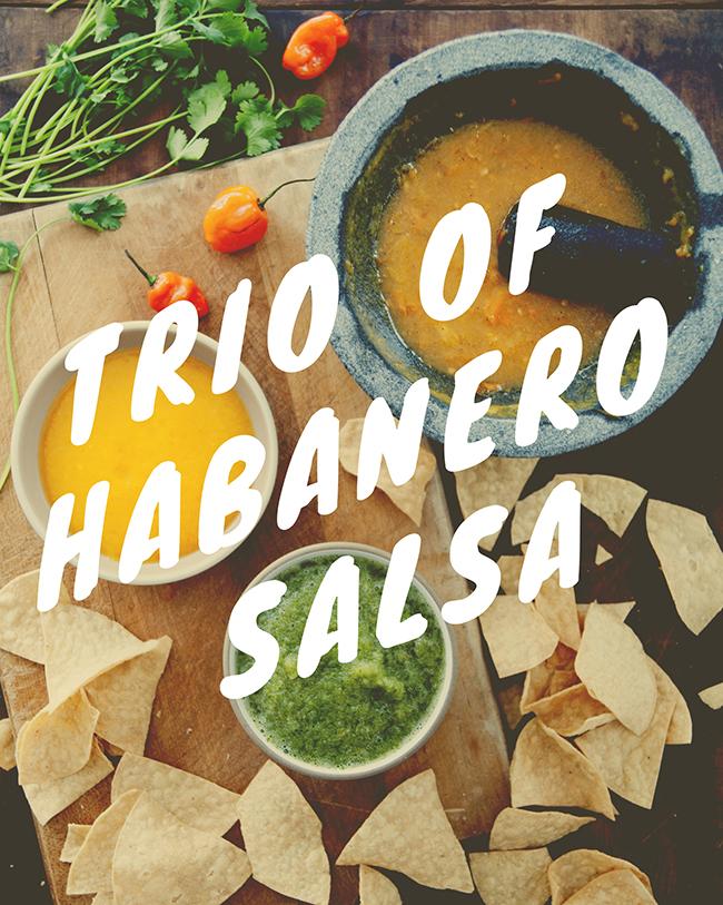 TRIO OF HABANERO SALSA
