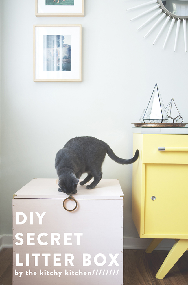 hidden litter box diy the kitchy kitchen