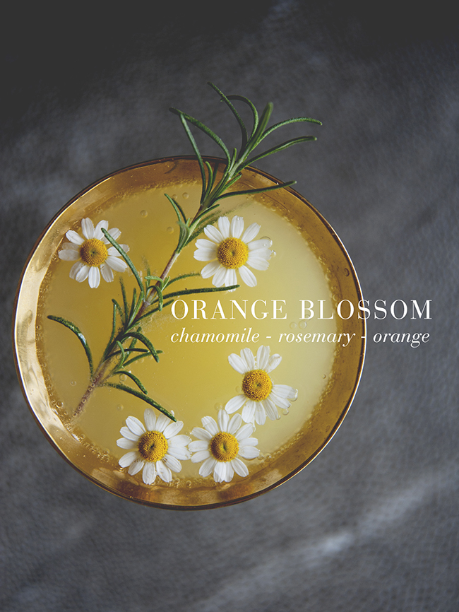 ORANGE BLOSSOM // The Kitchy Kitchen