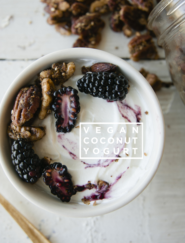VEGAN COCONUT YOGURT // THE KITCHY KITCHEN