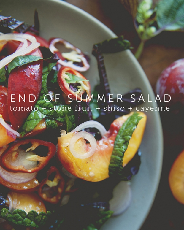 END OF SUMMER SALAD // THE KITCHY KITCHEN
